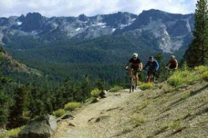 Mountain bike 1